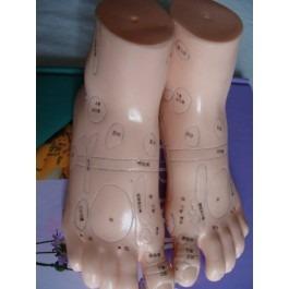 Feet model(massage)1